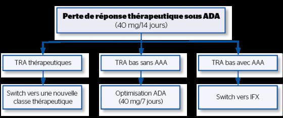 Algorithme thérapeutique en fonction de la pharmacocinétique de l'ADA chez les patients en perte de réponse à l'ADA