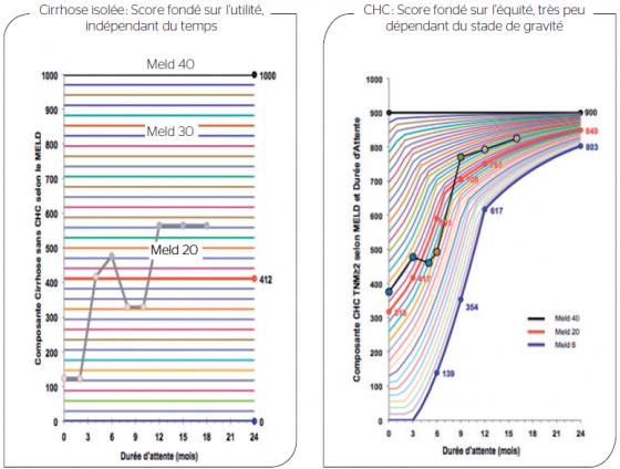 Figure 5. Attribution des greffons hépatiques selon le Score national foie initial : cohabitation de logiques différentes en fonction des indications