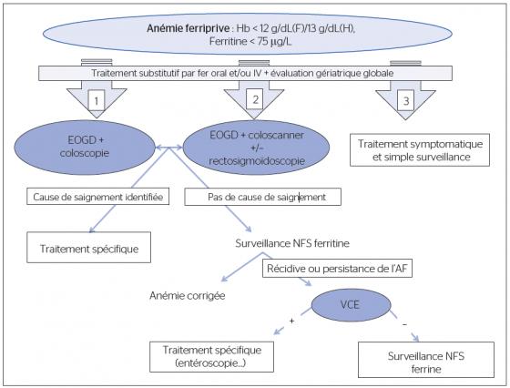 Figure 1. Algorythme de prise en charge de l'anémie ferriprive chez le sujet âgé