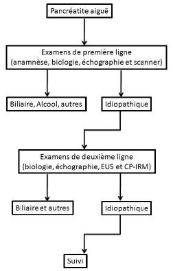 Figure 1. Proposition d'algorithme pour la conduite du diagnostic étiologique des pancréatites aiguës chez l'adulte (d'après réf # 3 et 5)