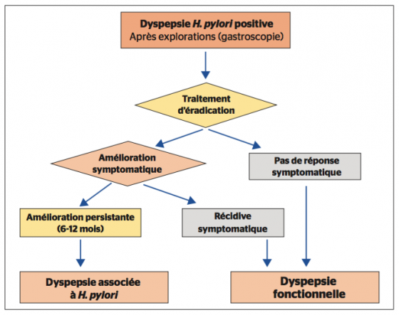 Figure 2. Algorithme de prise en charge de la dyspepsie fonctionnelle et de l'infection à H. pylori [5]
