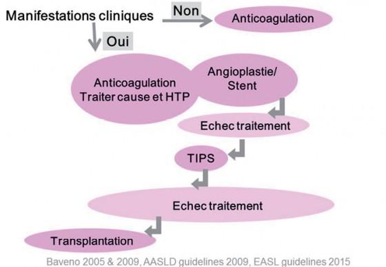 Figure 2. Stratégie thérapeutique