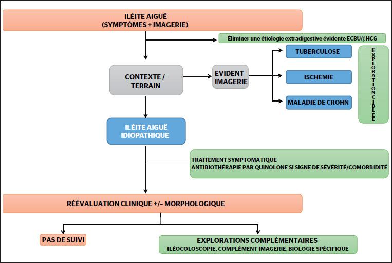 Figure 1. Prise en charge diagnostique et thérapeutique d'une iléite aiguë
