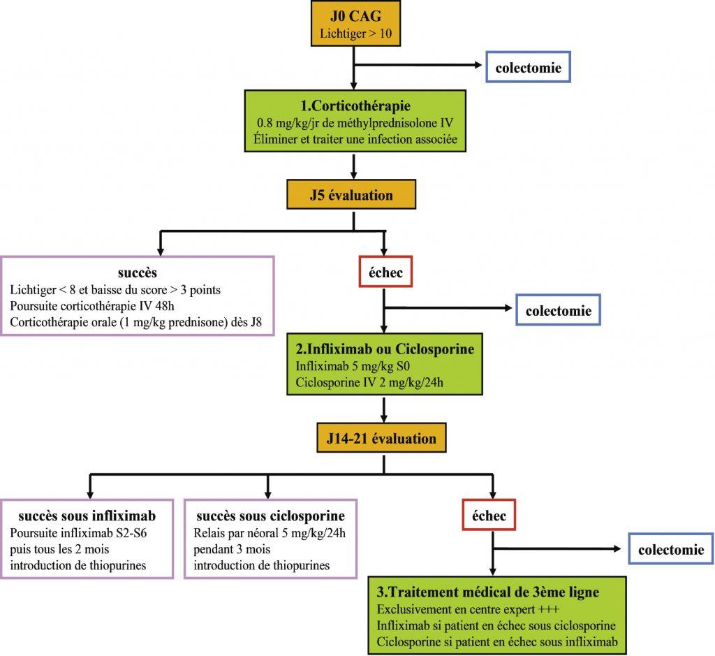 Figure 2. Algorithme de la prise en charge thérapeutique des CAG