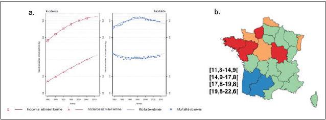 Figure 2. Épidémiologie du cancer primitif du foie en France : a – évolution de l'incidence et de la mortalité entre les années 1980 et 2010 chez les hommes et les femmes selon le réseau Francim. b – Incidence du CHC entre 2009 et 2012 et distribution régionale selon le PMSI.
