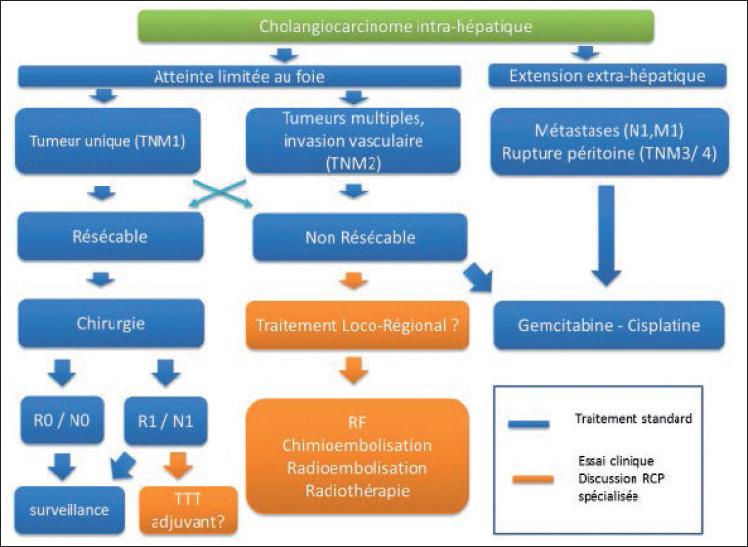 Figure 4. Traitement des CCi : proposition d'algorithme thérapeutique