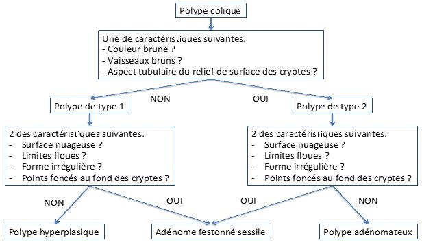 Polypes et polyposes festonnées – FMC-HGE
