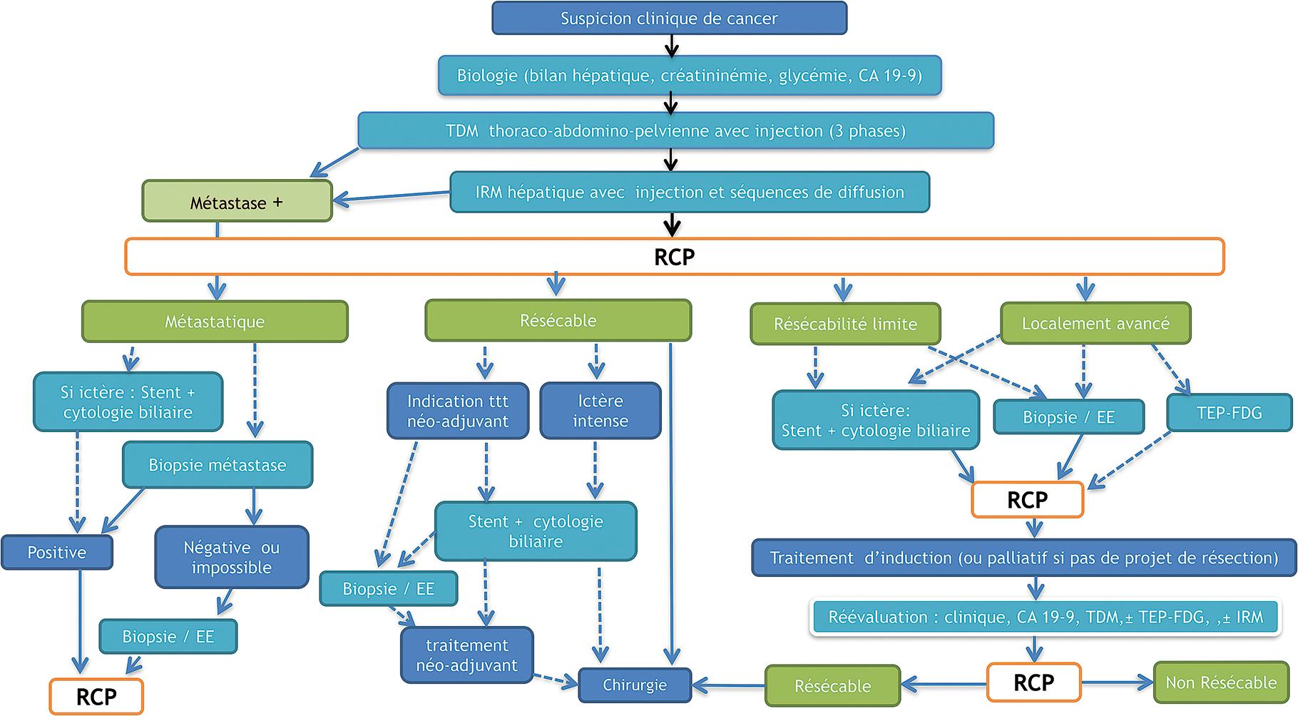 Traitement du cancer du pancréas (recommandations en cours ...