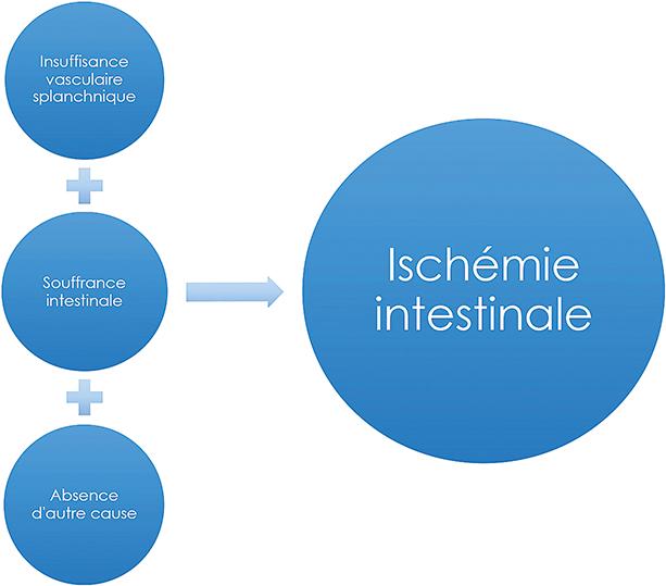 Comment optimiser la prise en charge de l'ischémie intestinale ...