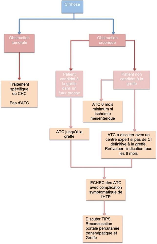 Thrombose portale chez l'adulte : quel bilan, quelle prise en charge ?