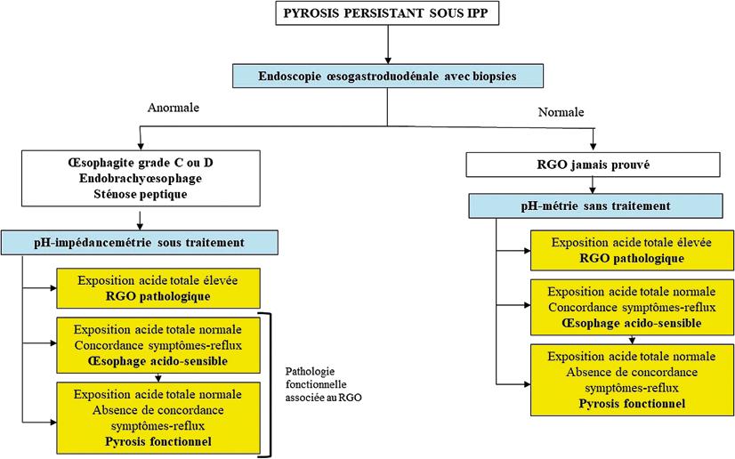Figure 4 : Les différents phénotypes de RGO au terme des investigations en cas de pyrosis persistant après traitementpar IPP optimisé