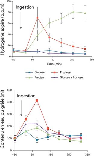 Figure 2 : Hydrogène expiré en fonction des prise orales de fructose, fructans et glucose ; d'après Murray K et al (11)