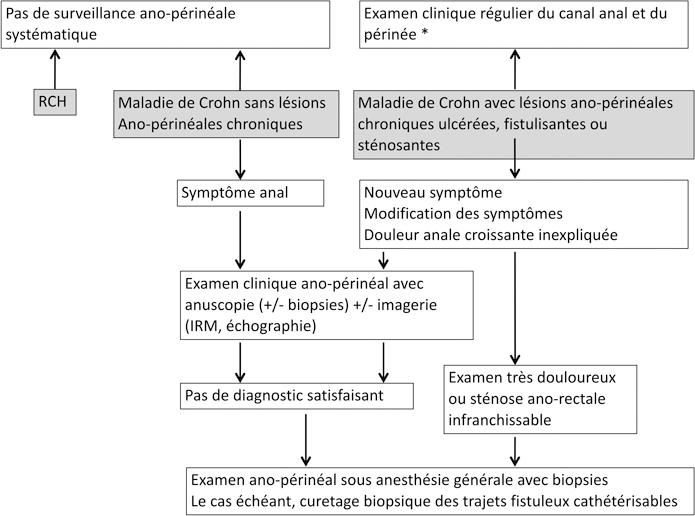 Figure 1 : Algorithme de prévention et de détection des cancers de la sphère ano-rectale au cours des MICI