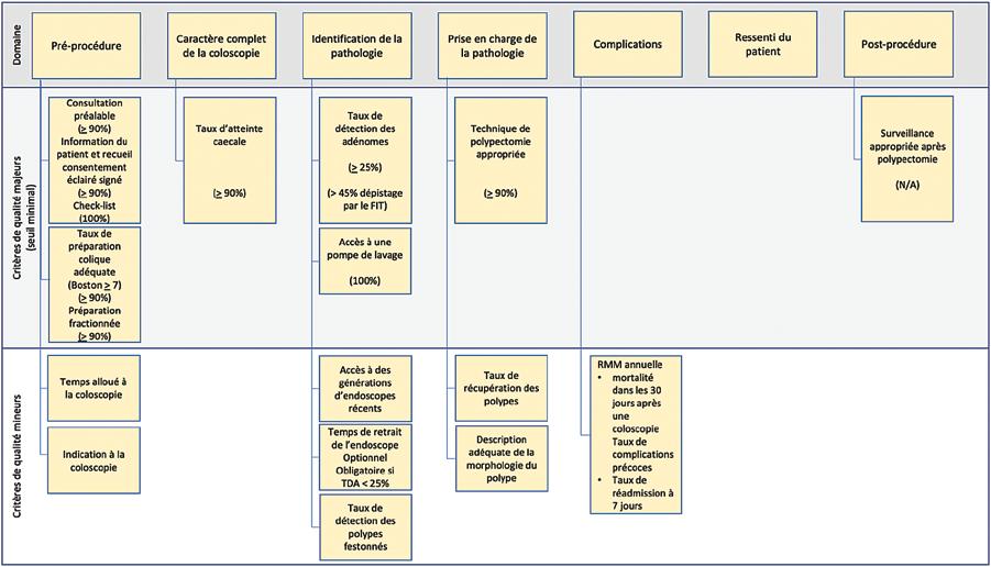Figure 1 : Différents domaines de performance de la coloscopie et critères reconnus par l'ESGE (haut) et par le groupe de travail (bas)