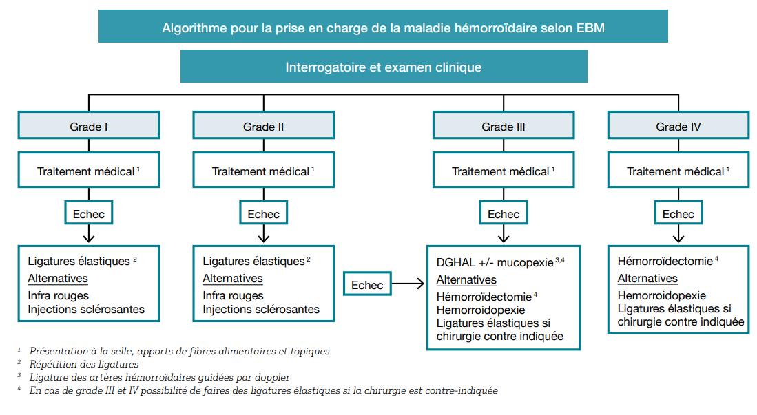 Algorithme pour la prise en charge de la maladie hémorroïdaire selon EBM