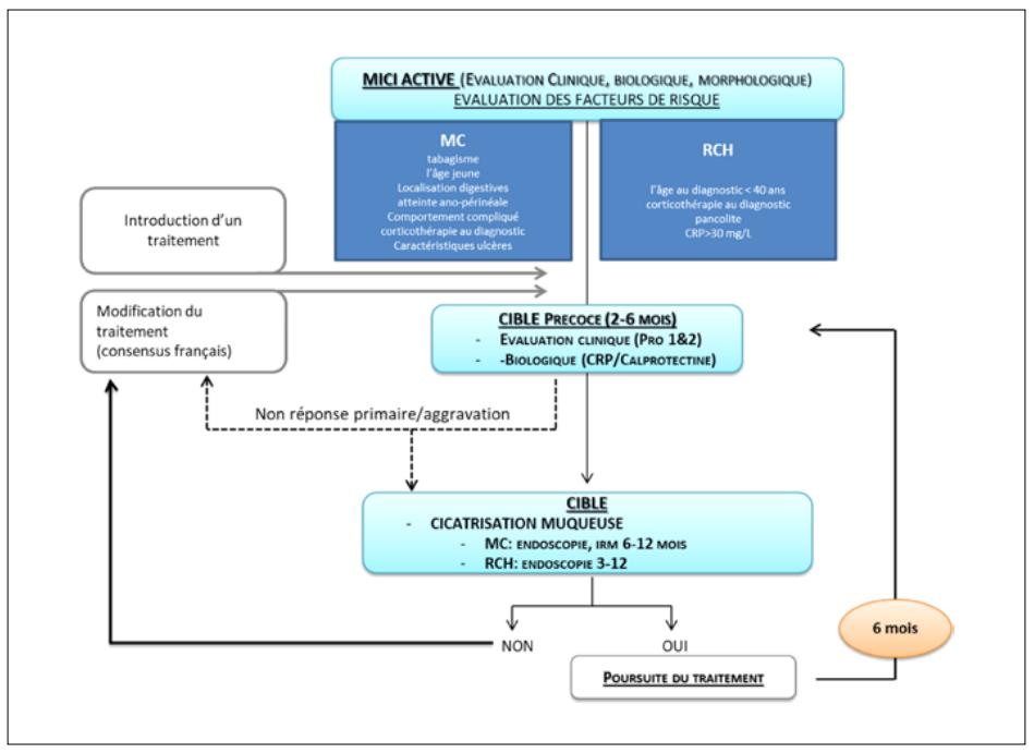 Algorithme synthétique d'application du treat-to-target pour les MICI