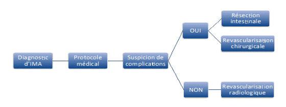La prise en charge actuelle de l'IMA, qu'elle soit veineuse ou artérielle, associe trois approches