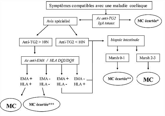 Figure 3 : Arbre diagnostic devant des symptômes compatibles avec une maladie coeliaque (modifié d'après [1]).