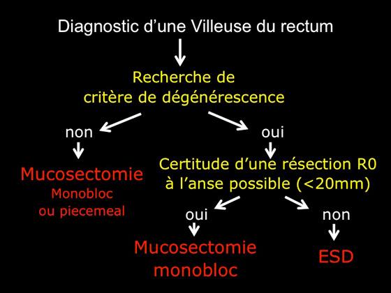 Figure 9 : algorithme décisionnel du choix du traitement endoscopique